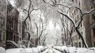 jesienno-zimowe obowiązki zarządcy